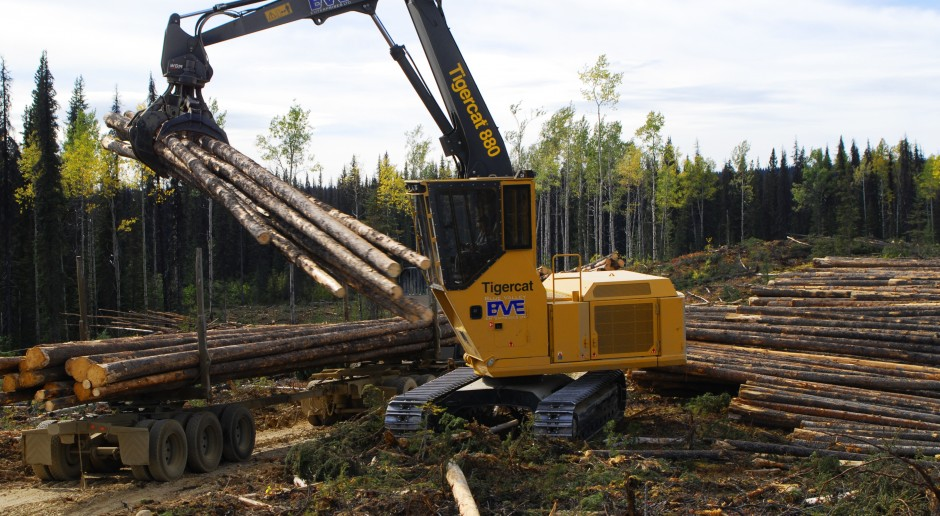 High resolution: Tigercat 880 logger