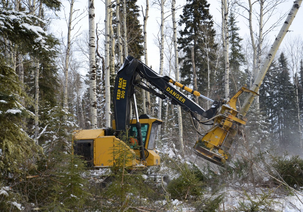 Anderson Logging's original 845 feller buncher, produced in the late 1990s when an 845 actually weighed 45,000 pounds (20 000 kg).