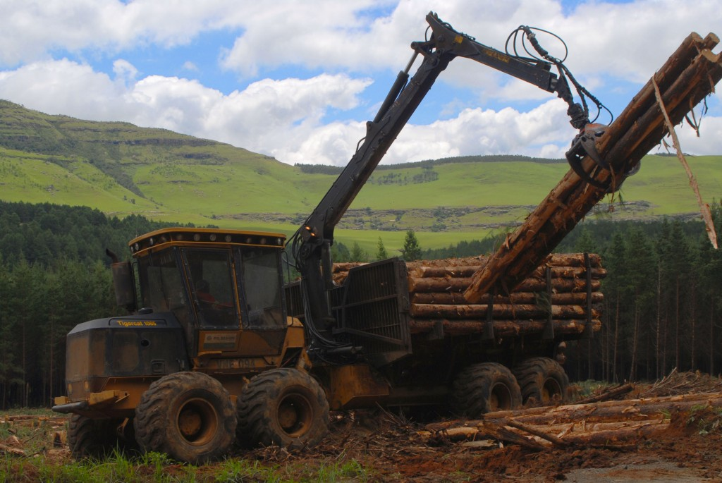 A 1065 forwarder loads logs into it's bunks. Rolling green hills flow in the distance.