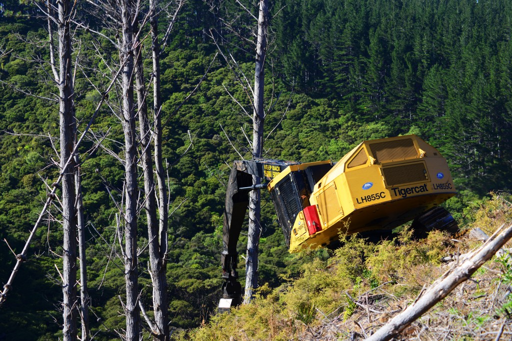 Peter and Tim Mold's LH855C felling for a yarder on steep terrain.