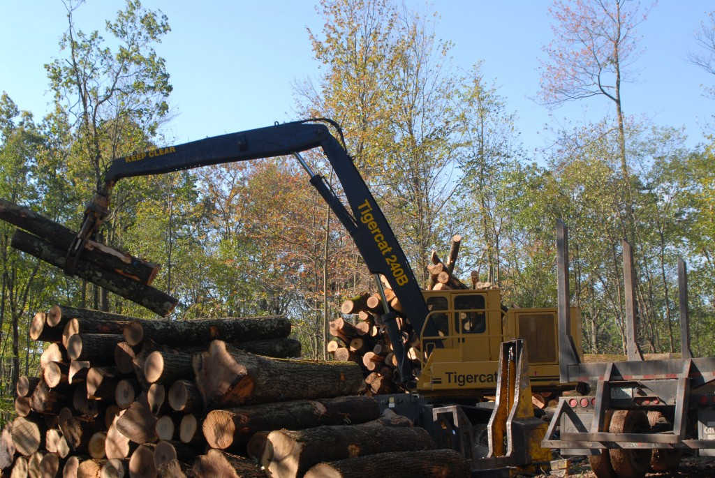 Jimmy's 12 000 hour 240B looks like new as it piles cut-to-length logs on top of eachother