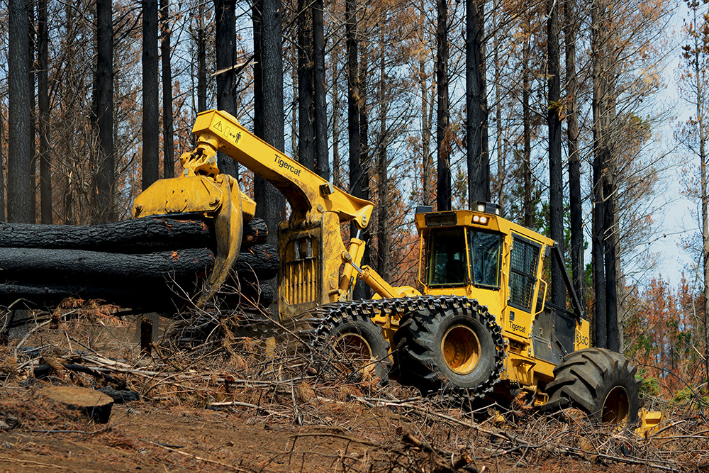 A 615C skidder salvaging burnt timber in Chile.
