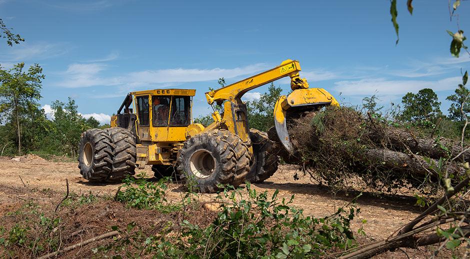 Un 632H con neumáticos dobles arrastra una carga de árboles